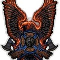 Fire Rescue Eagle D